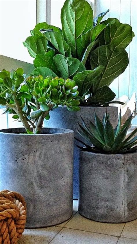 diy planters 25 best ideas about concrete planters on pinterest
