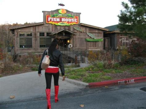 white river fish house cool exterior picture of white river fish house branson tripadvisor