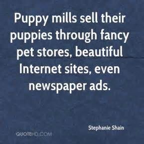 fancy puppy store pet quotes page 8 quotehd