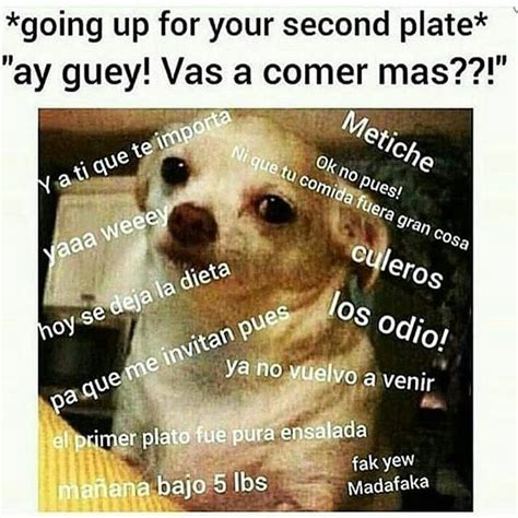 Mexican Thanksgiving Meme - 680 best funny images on pinterest