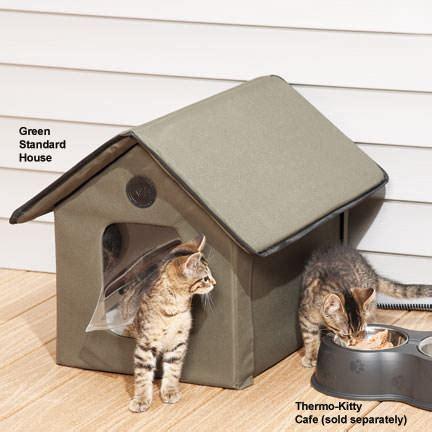 foster smith 5 tips to keep warm in winter iheartcats