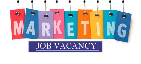marketing executive jobs  career opportunities