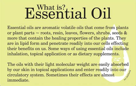 what is l oil young living essential oils 171 barbettespitler com