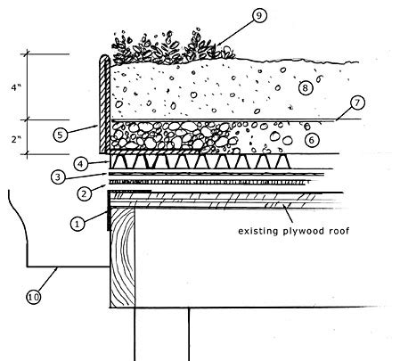 roof garden detail section 16 green roof design details images green roof detail
