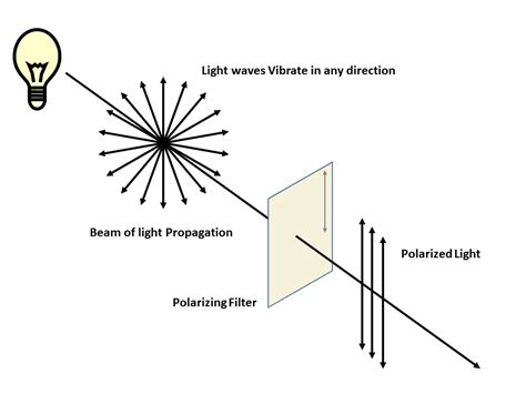 Polarization Of Light polarized light photography for documentation cultural heritage science open source