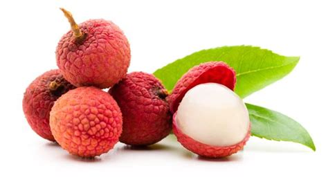 All About Lychees by Lychee Fruit To Blame For Mystery Illness Killing Children