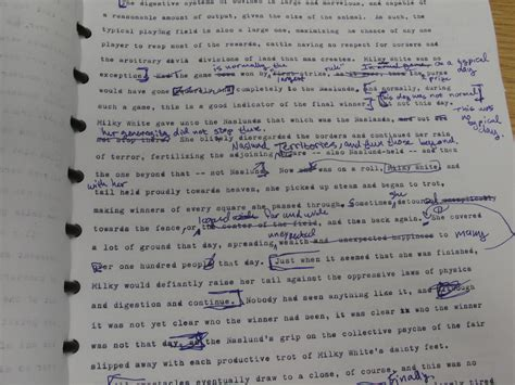 Essay Editing by Help With Writing A Dissertation Editing Ssays For Sale