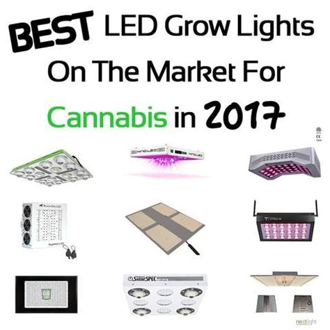 best grow lights on the market best led grow lights on the market for cannabis in 2017
