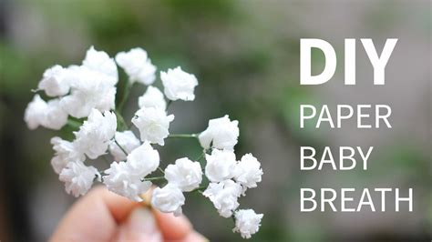 How To Make A Paper Baby - diy paper baby breath flower from tissue paper