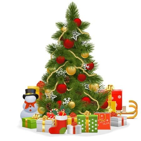 searching for a christmas tree farm we have you covered