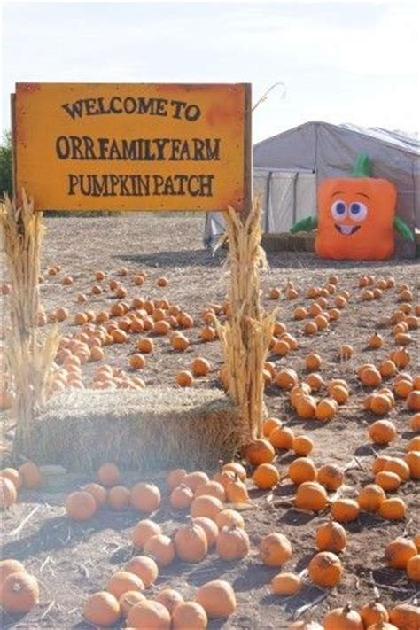 oklahoma city orr family farm pumpkin patch farms pumpkin patches and families on pinterest