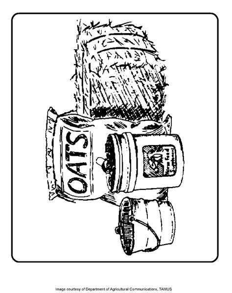 hay ride coloring pages