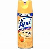 lysol kill bugs  steps   bed bugs sprays