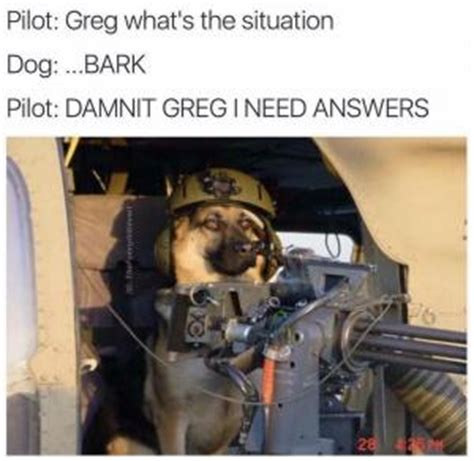 And Interesting Answers From Maggiedammit by Pilot Humor Kappit