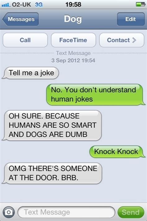 message and pictures 8 hilarious text message conversations with dogs