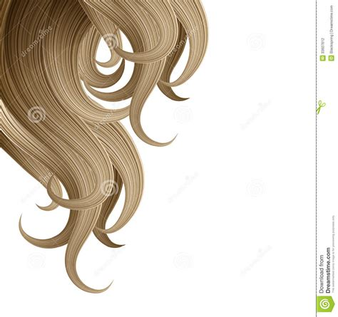 Hair Style And Haircare Design Template Stock Photography Image 33607612 Hair Design Templates