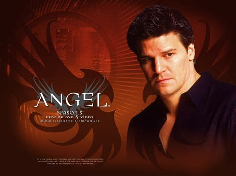 scow angle angel tv male characters wallpaper 17866127 fanpop