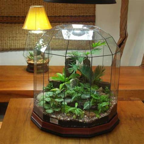 kitchen window terrarium best 25 terrarium le ideas on pinterest