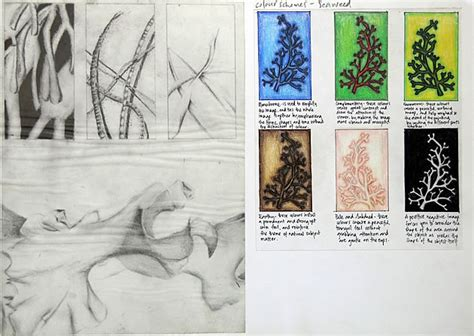 sketchbook gcse sketchbook ideas for gcse images
