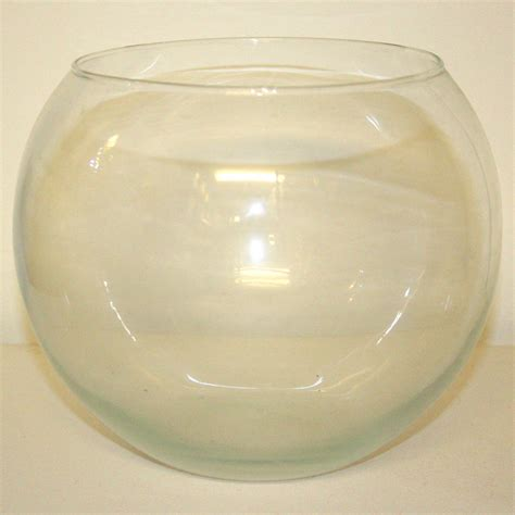 glass globe vase globe bowl clear glass vase style 1 ten and a half