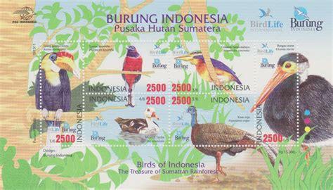 Kaos Burung Walet Background Hutan home burung indonesia