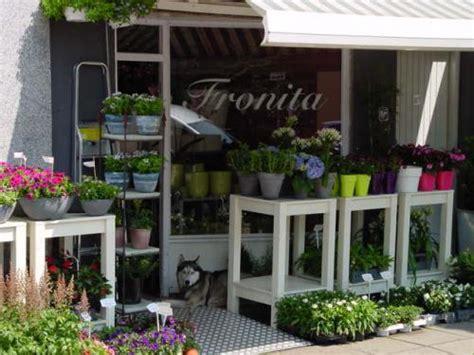 fronita bloem en groen bloemist utrecht fronita bloem groen regiobloemist