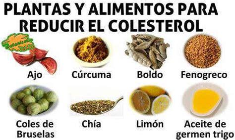 alimentos para evitar el colesterol alto dieta para el colesterol