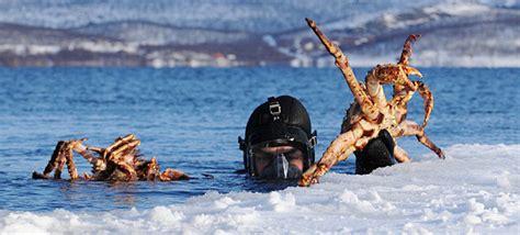 banche norvegesi norvegia d inverno perch 233