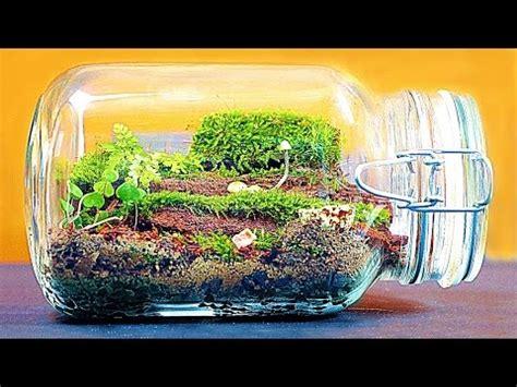 Ewiges Terrarium Bauen wie ein gro 223 es ewiges terrarium macht
