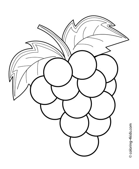 grapes fruits  berries coloring pages  kids