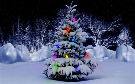 beautiful christmas tree snow wallpaper