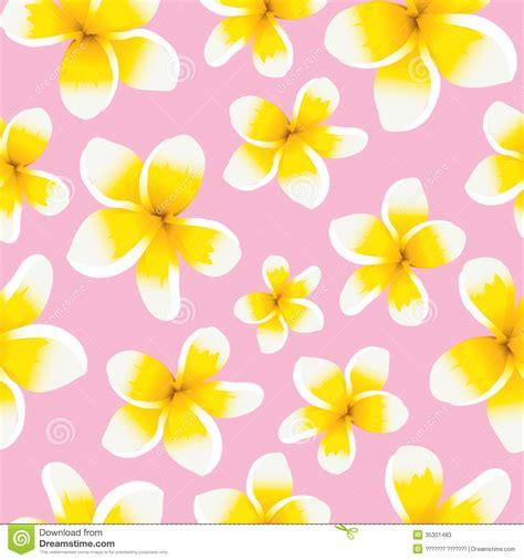 pattern yellow pink floral background seamless pattern yellow plumeria stock