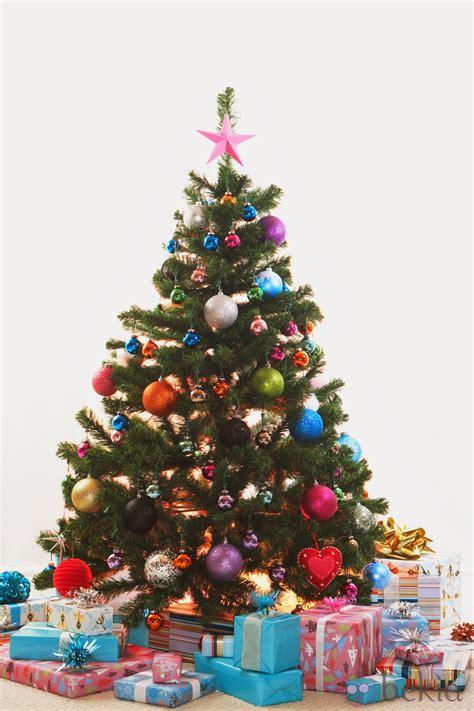 imagenes con arbol de navidad banco de imagenes y fotos gratis arbol de navidad parte 2