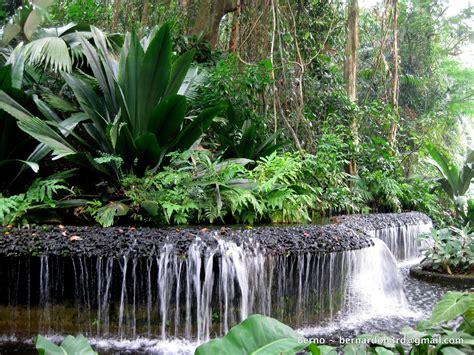 Singapore Botanic Gardens Botanic Garden In Singapore Botanical Garden In Singapore