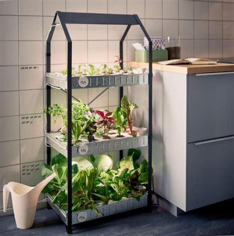 indoor gardening ikea kryddavaexer series indoor