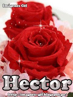 imagenes gif rosas rojas im 225 genes gif rosas rojas con tu nombre