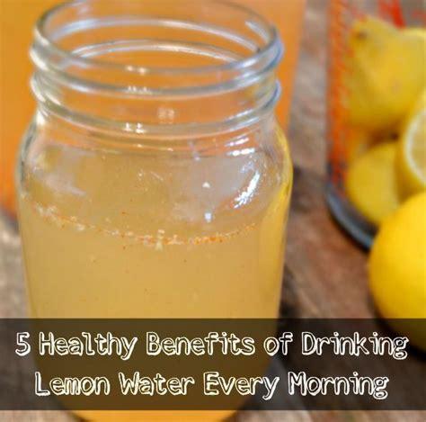 Cold Water And Lemon Detox by Best 25 Lemon Water Ideas On Lemon