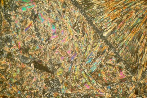 serpentine in thin section spinifex komatiite lake victoria canada thin section