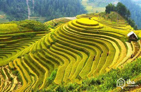 Bungolow by Location Vietnam Dans Une Maison Pour Vos Vacances Avec Iha