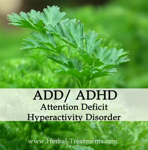 Herbal Adha herbal medicine for attention deficit hyperactivity disorder add adhd caraf avnayt s herbal