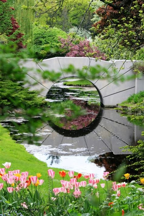 1000 images about bridges at dow gardens on