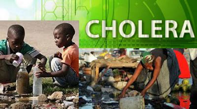 173 cholera patients treated, discharged in mubi
