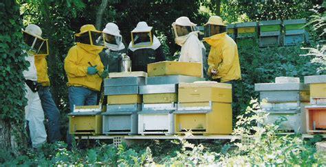 cassetta per apicoltori yukirin no sekai agosto 2011