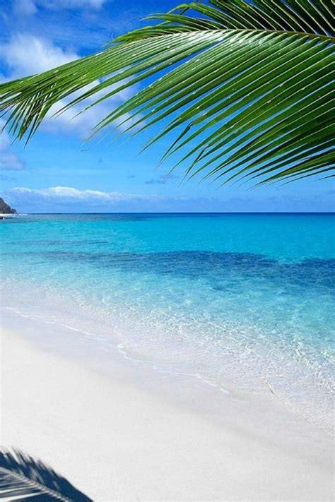 private island  fiji  specifically