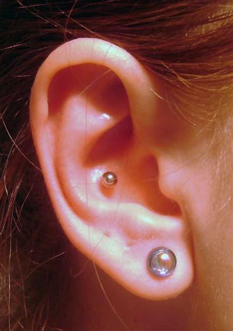 inner piercing inner conch piercings askideas