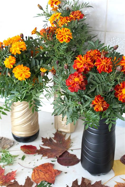 plastic bottle flower vase amazingly easy recycling project