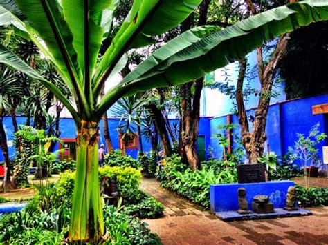 casa azul frida la casa azul de frida kahlo dalia ceja
