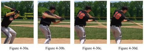 muscles used to swing a bat baseball swing anatomy shoulders muscles push and pull