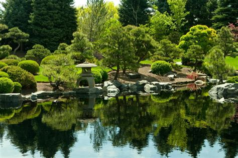 panoramio photo of japanese garden denver botanic gardens