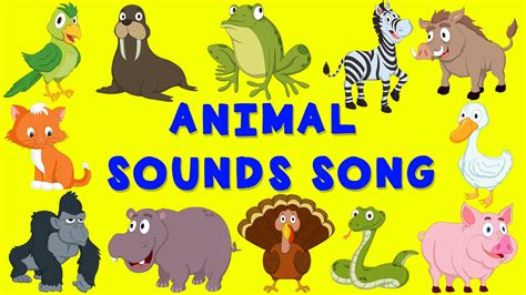 animal sounds animal sounds song nursery rhyme baby song for